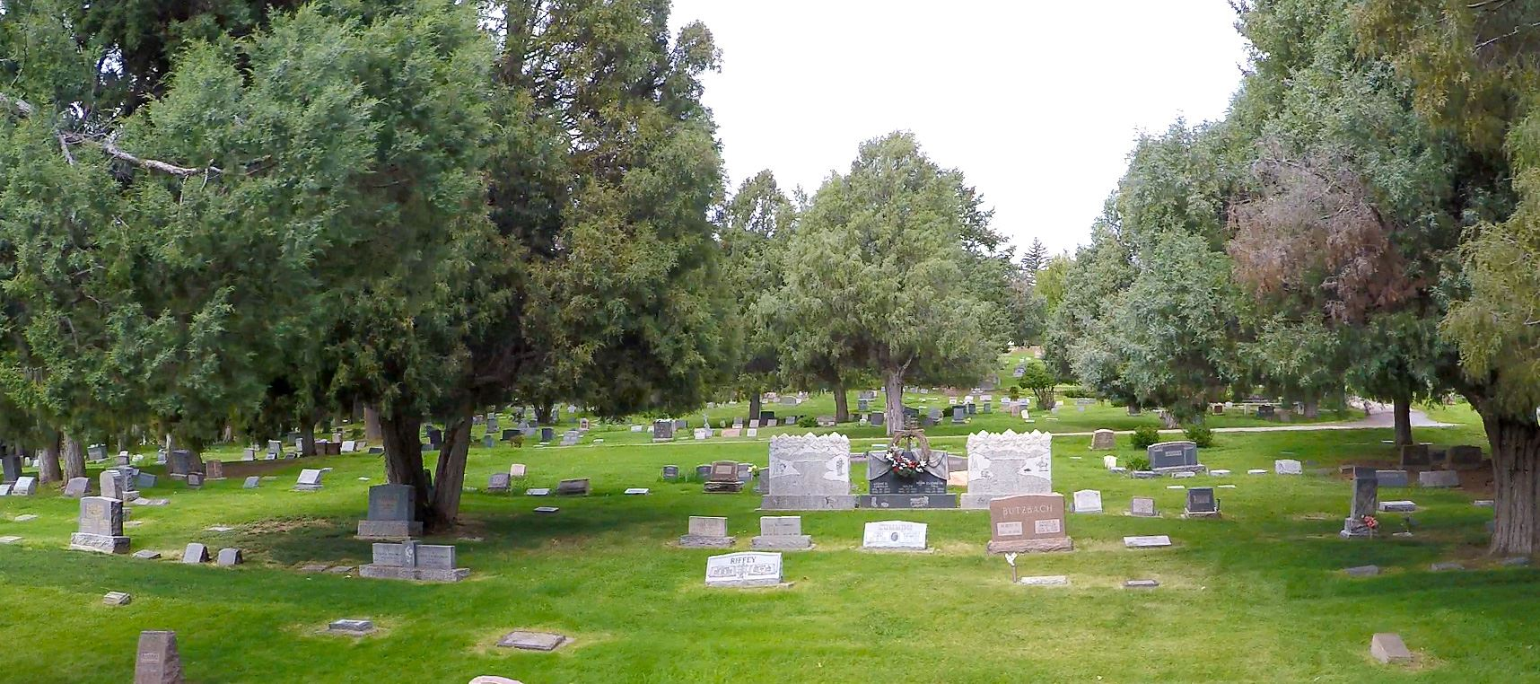 Photo of trees and headstones at Greenmount Cemetery